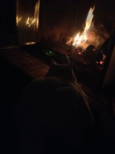 My parents' cat and I warmed our toes in front of the fire.
